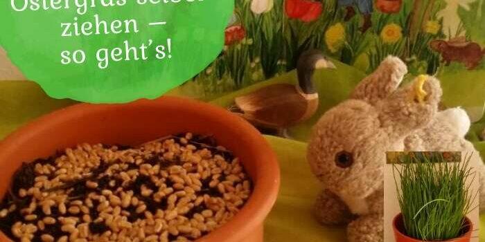 Ostern mit Kindern: Ostergras selber ziehen – so geht's!